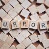Behaviour Support Coordinator